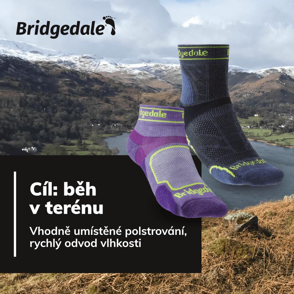 SP Bridgedale